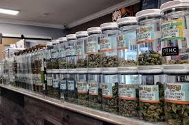 How to choose the trusted medical marijuana dispensary