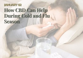 CBD Can Help With Cold And Flu